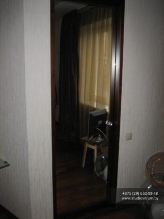 ddk 31 338x450 - Стеклянные двери