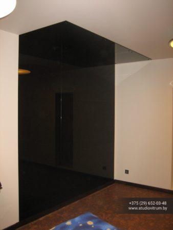 psz 12 338x450 - Панно и зашивка стен стеклом и зеркалом